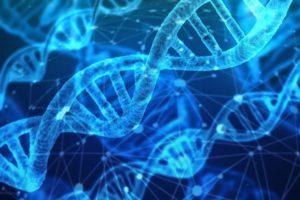 RNA Analysis